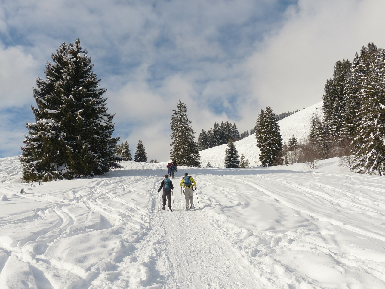 snowshoeing